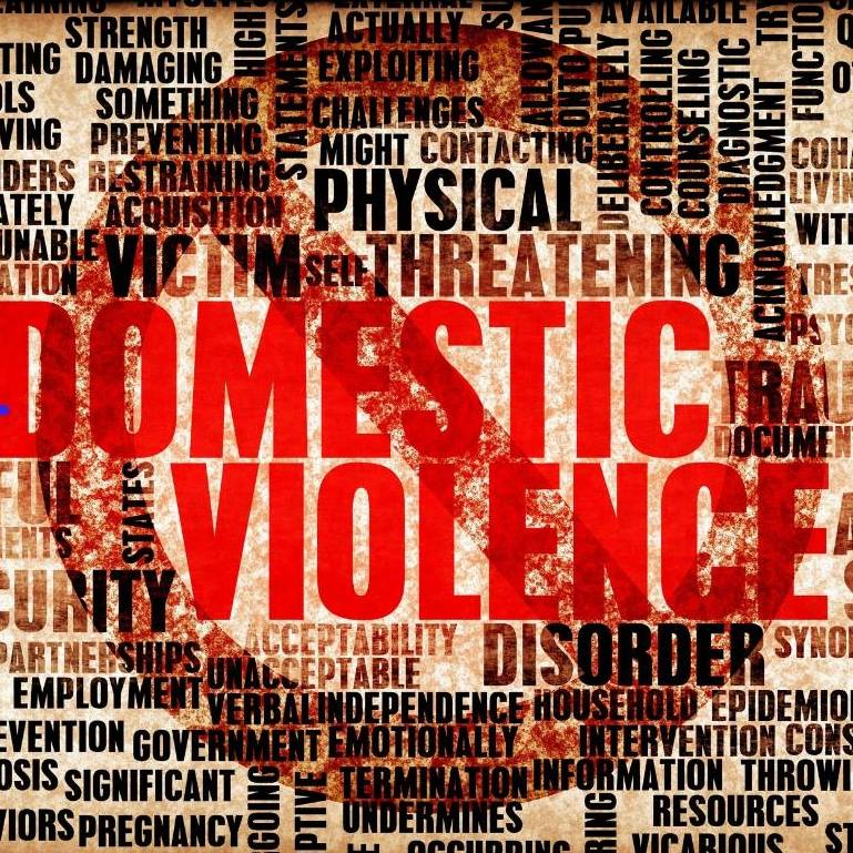 Domestic Violence Content: Domestic Violence - Sara D Moore, Author